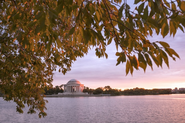 jefferson memorial, tidal basin, washington dc, sunset, leaves, autumn, fall, pink, light, nw, washington dc, national parks, memorials, visit