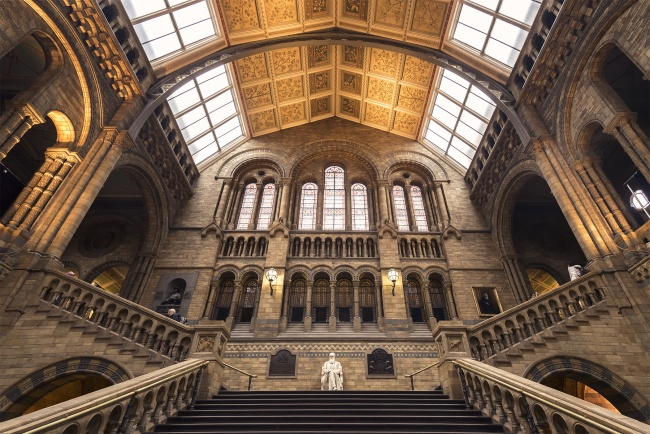 natural history museum, entrance, london, exhibits, galleries, science, news, videos, kensington, dinosaur,