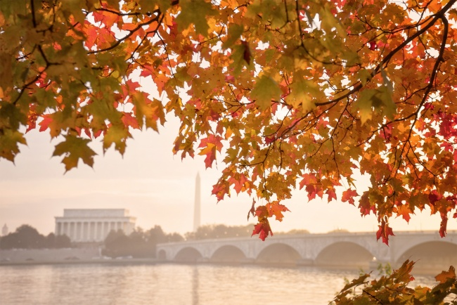 theodore roosevelt, island, trail, leaves, trail, sunrise, early morning, gw parkway, george washington parkway, early morning, potomac river, autumn, virginia, va, dc, nature, lincoln memorial, washington monument, memorial bridge, sunrise, washington dc