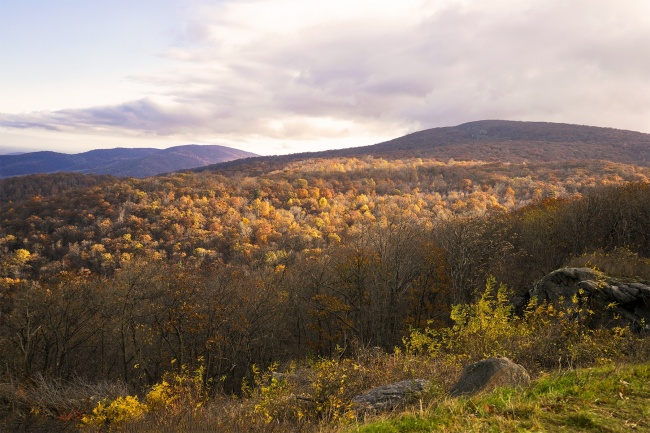 shenandoah national park, skyline drive, mountains, fall, colors, autumn, early morning, sunrise, blue ridge mountains, appalachian trail, virginia, va, national park,
