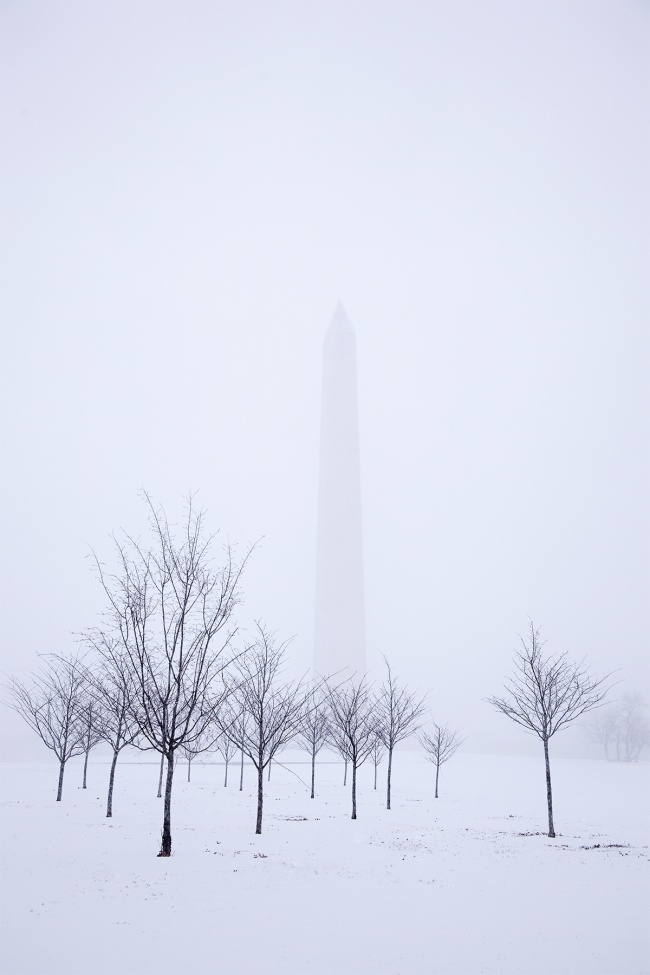 washington monument, washington dc, national mall, george washington, trees, snow, winter, national mall, national park, white, obelisk