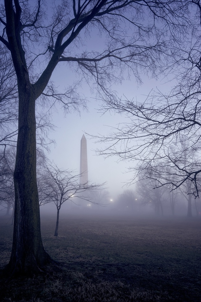 fog, washington monument, washington dc, weather, early morning, tidal basin, trees, mood, weather, itsamazingoutthere, simplicity, spooky,