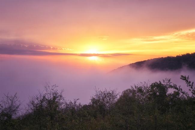 shenandoah national park, blue ridge mountains, virginia, skyline drive, fog, sunrise, hawksbill, old rag mountains, va, visit, travel, fall, autumn