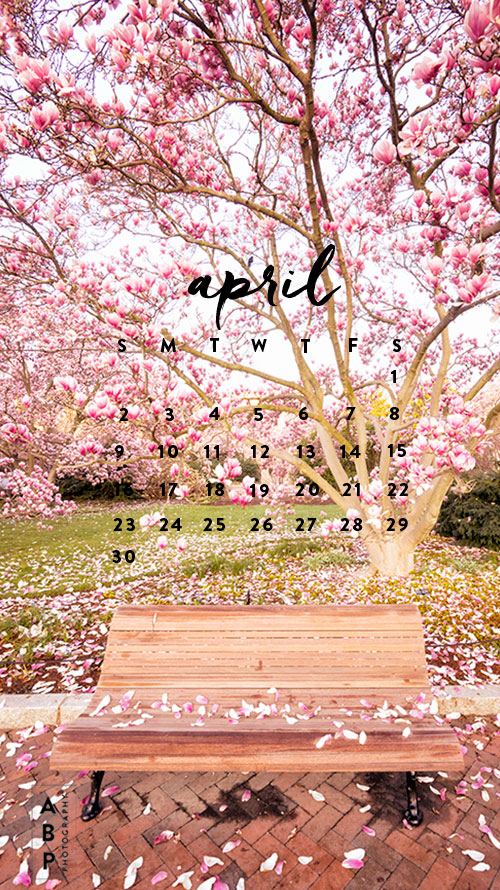 April-Wallpaper Download_Angela B Pan