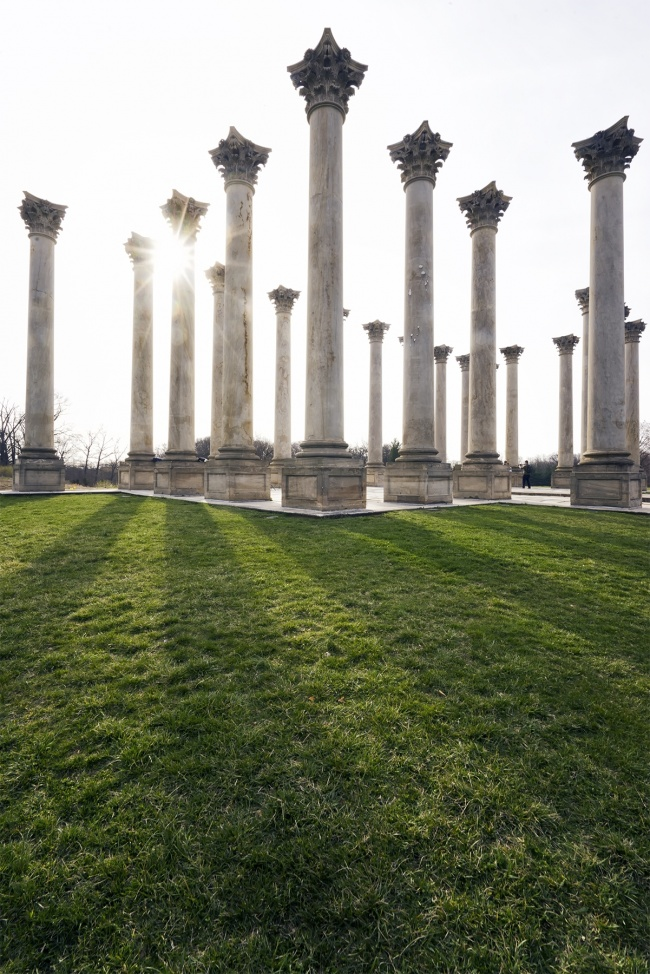 US national arboretum, washington dc, wwim15, instagram, igdc, humane rescue alliance, columns, architecture, sun flare, shadows, light, instameet, photographers, dogs, camera settings, adopt