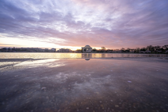 cherry blossoms, washington dc, thomas jefferson, jefferson memorial, reflection, puddle, tidal basin, sidewalks, cherry blossom festival, sunrise, early morning, puddle, cherry blossom peak, march, camera settings