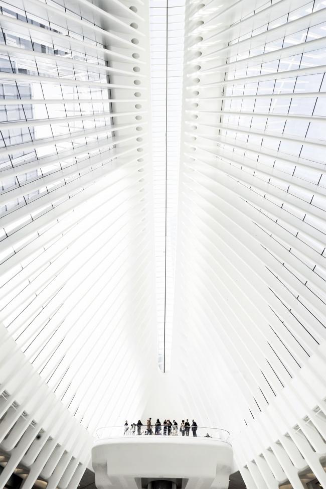 new york, new york city, nyc, oculus, world trade center, wtc, transit station, shopping mall, interior, windows, architecture, shopping, freedom tower, 9/11, oculus, subway, PATH train, transportation, interior, white