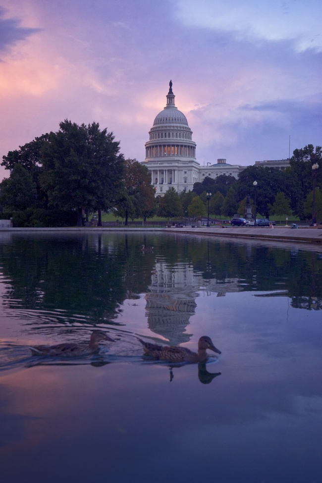 sunset, washington dc, us capitol, architecture, storm, rain, clouds, east, architecture, reflecting pool, reflection, ducks, east coast, summer storms, sky, pink, aesthetically pleasing