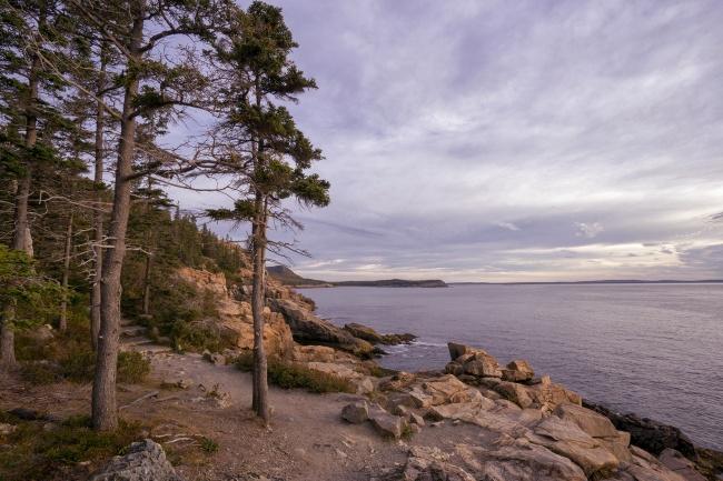 Ocean Path, Acadia National Park, maine, bar harbor, otter point, sandy beach, easy hike, travel, visit, parking, park bus, thunder hole, early morning, sunrise, cadillac mountain, park loop rd, parking area