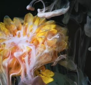 artechouse, sensory, art, experiences, thanksgiving, exhibit, thankful, family, grateful, flower, smoke, visit,