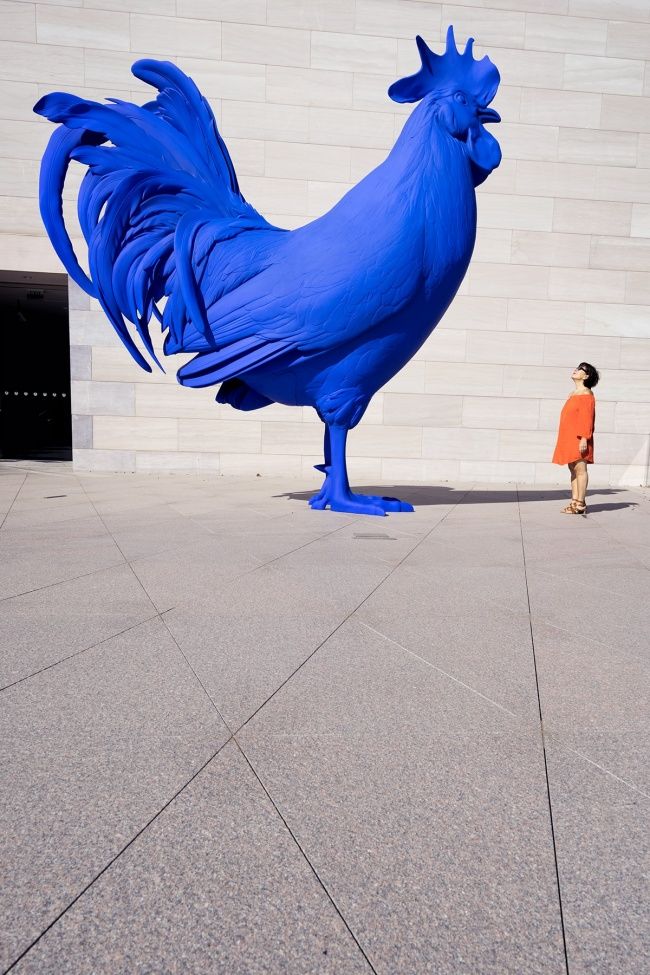 Katharina Fritsch's Hahn/Cock, national gallery of art, blue cock, blue rooster, big rooster, rooftop, washington dc, instagram, community, igdc, walk with locals, photographers, local photographers, photo walks, meetup, gratitude, washington dc