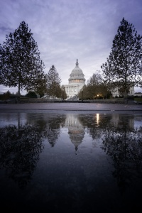 United States Capitol, Washington DC, sunrise, early morning, capitol building, reflection, puddle, steps, trees, autumn, fall, waking up, statue of freedom, capitol hill, east coast, government, photowalk