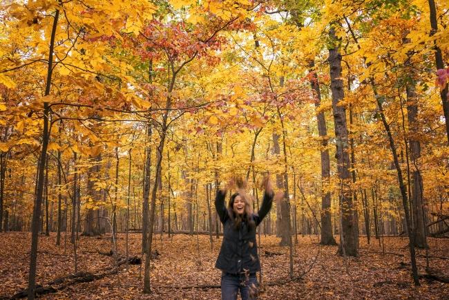 Fall Colors, manassas, manassas battlefield, battlefield park, prince william county, civil war, trees, autumn, fall, selfie, yellow, leaves