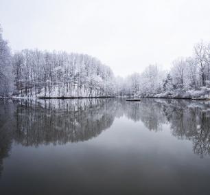 Winter Lake, reflection, winter, snow, grass, platform, mclean, virginia, va, neighborhood, houses, northern virginia, frozen, black and white, color, landscape