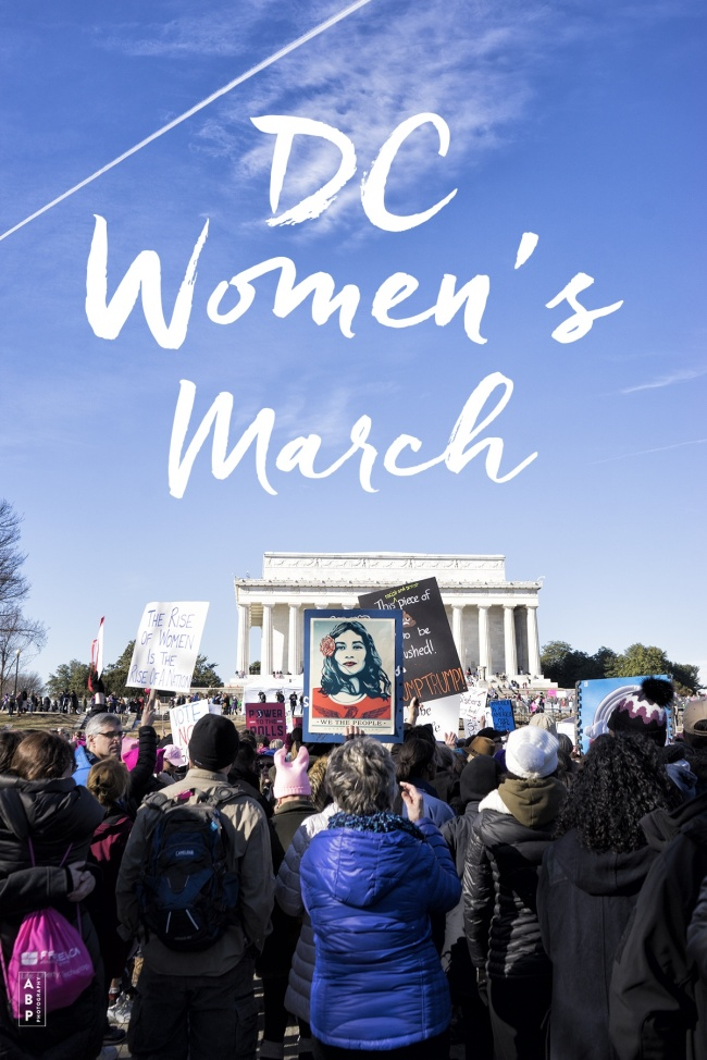 DC Women's March 2018, washington dc, lincoln memorial, president trump, inauguration, protest, demonstration, nasty women, women's march, human rights, voting, government, democracy, rights, power, signs, marchers