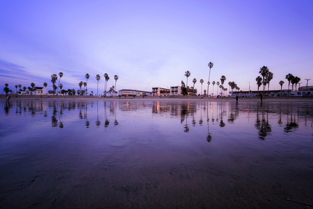 Ocean Beach, San Diego, California, ca, travel, visit, west coast, socal, palm trees, reflection, sunset, purple, ob, tides, water, waves, beach,
