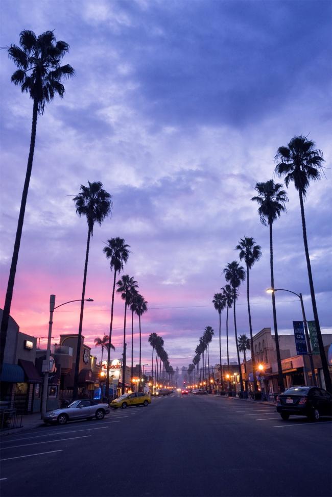 Ocean Beach, San Diego, california, palm trees, sunrise, photography, travel, color, socal, ocean beach pier, sky, weather, fog, beachfront, beach
