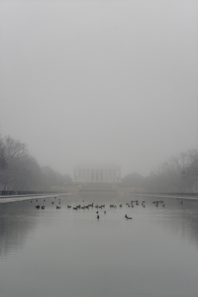 Lincoln Memorial, national mall, washington dc, reflecting pool, Canadian geese, weather, early morning, photowalk, photoshoot, fog, monotone,