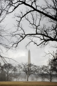 DC Monument, washington monument, the pencil, tidal basin, fog, weather, trees, winter, bare trees, framing, east potomac park,