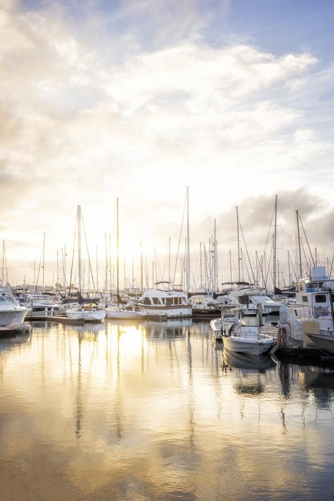 Point Loma Marina, san diego, west coast, california, socal, pt loma, sailboats, shelter island, yachts, early morning, sunrise