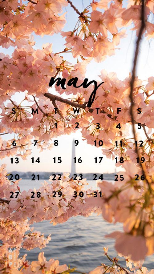 May Wallpaper Download_Angela B Pan