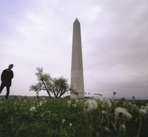 US Monument, national mall, washington dc, cloudy, moody, tripod, photography, dandelions, self portrait, selfie, photowalk, monuments,