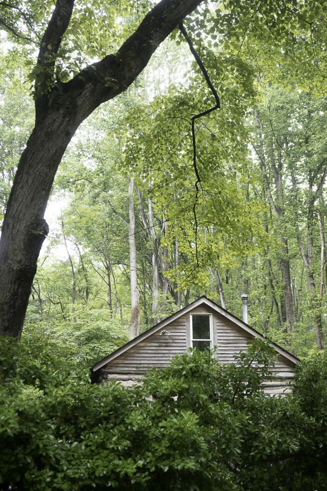 Shenandoah National Park, Old Rag, virginia, national park, nps, rain, tree, house, architecture, nature, hike, va, trails,