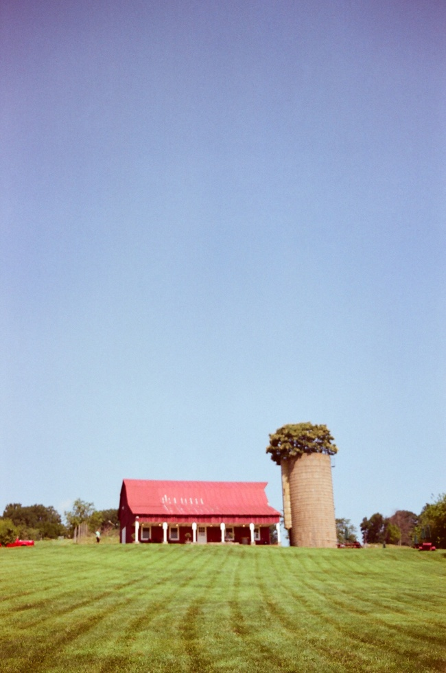 Canon T70, film, camera, kodak, gold 200, instagram, vintage, virginia, peach picking, red barn, delaplane, shih tzu, va, summer,