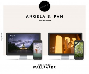 August 2018 Wallpaper Downloads, free downloads, calendars, mobile, iphone, desktop, downloads, washington dc, lincoln memorial, us capitol, lightning, flamingo, house, green, virginia,