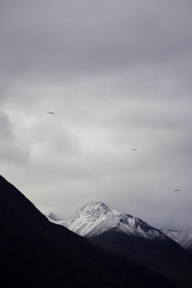 Åndalsnes, mountain peak, birds, mountains, fjords, west coast, norway, rain, weather, snow, romsdalsfjorden, romsdal, fjord, molde, vestnes, haram, midsund, nesset, rauma