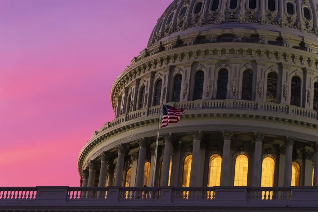 Dome, US Capitol Building, washington dc, tour, capitol building, interior, architecture, sunrise, capitol hill, NE DC, SE DC, pink