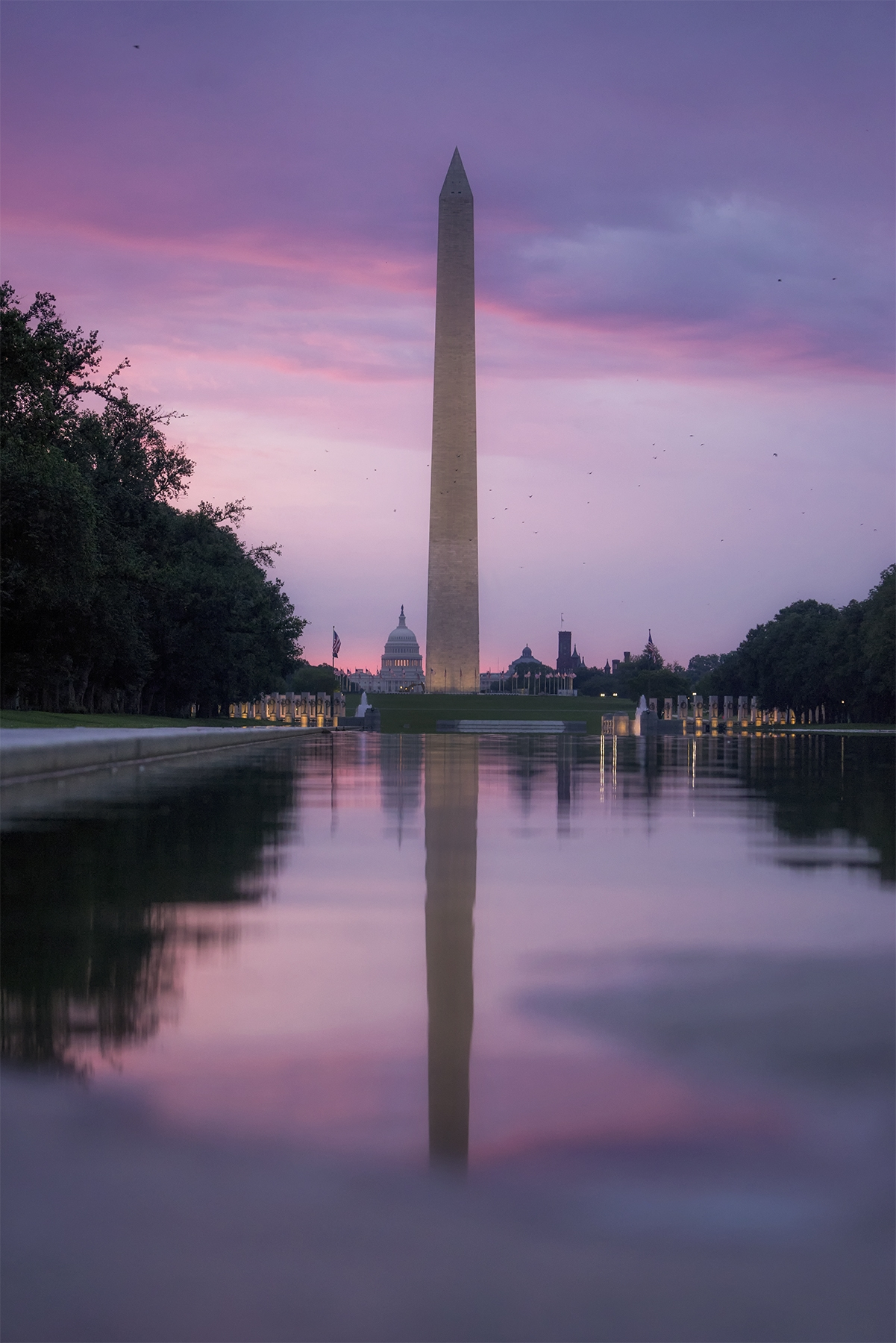 washington dc, national mall, sunrise, lincoln memorial, reflecting pool, washington monument, birds, pigeons, us capitol building, us capitol, best view in dc, visit, travel