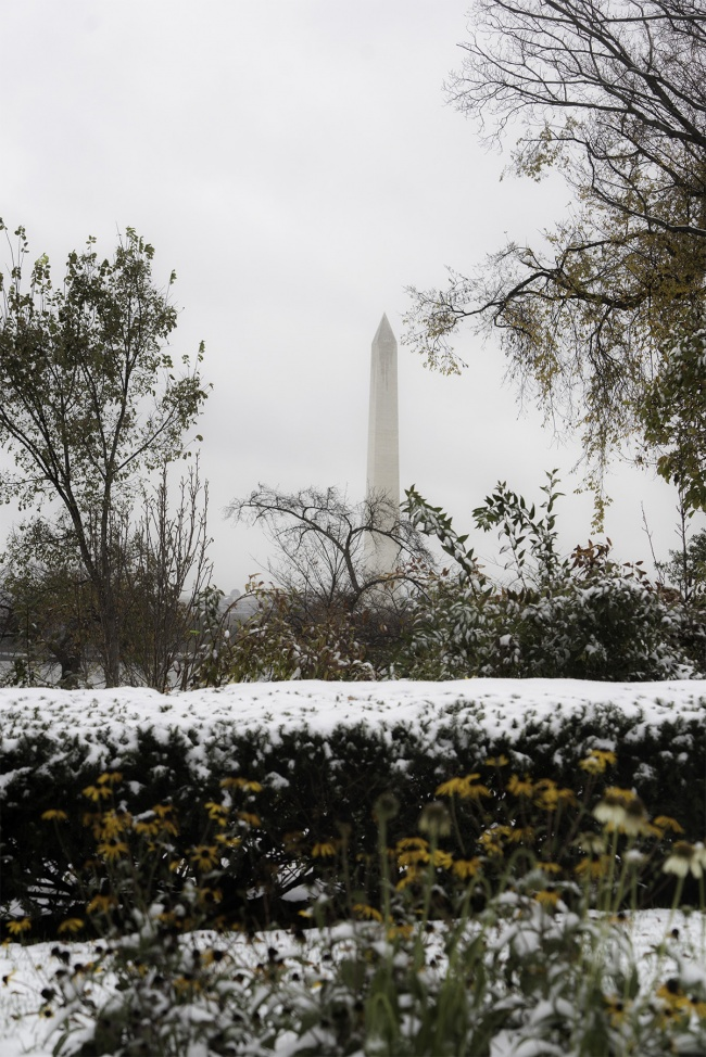 Washington DC Snow Predictions, washington dc, national mall, jefferson memorial, weather, snow, winter, landscape, trees, bushes, fall, autumn, leaves, christmas time