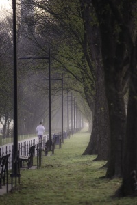DC Reflecting Pool, Washington DC, fog, meteorologist, early morning, street photography, national mall, reflecting pool, trees, open field, runners,