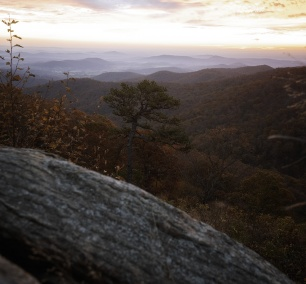 Thornton Gap Skyline Drive, shenandoah national park, sunrise, fall, autumn, early morning, photography, composition, virginia, visit shenandoah national park, skyline drive, trees, color change,