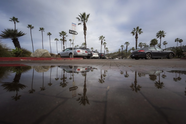 La Jolla Shores, Palm Trees, rain, san diego, puddles, parking, where to park, palm trees, la jolla, beaches, reflection, socal, southern california