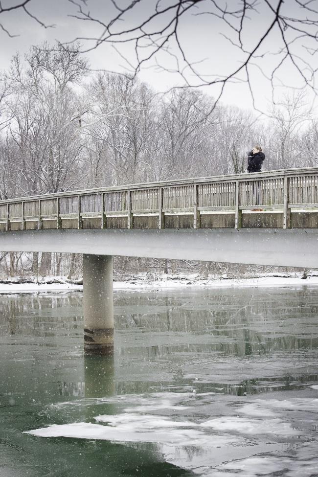 Roosevelt Island, Arlington VA, winter, snow, northern virginia, photographer