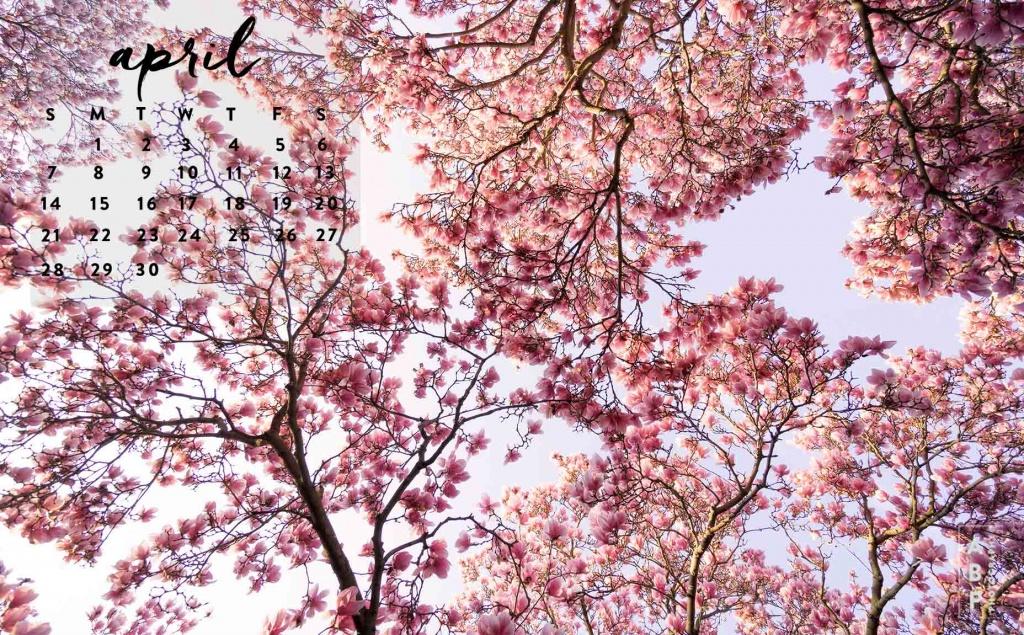 March-Wallpaper Download_Angela B Pan