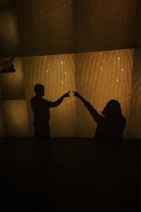 hirshhorn, pulse, Rafael Lozano-Hemmer, modern art, fingerprint, heartbeat, washington dc, art, modern