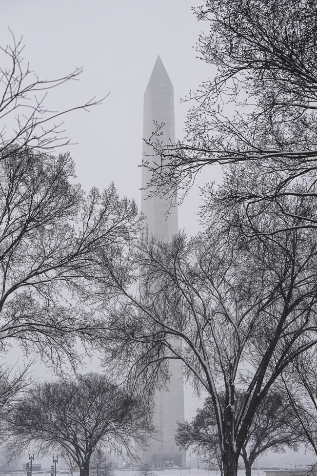 washington monument, washington dc, snow, winter, trees, national mall, metro, american flags, winter,