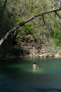 austin, texas, hamilton pool preserve, scenic pool, waterfall, canyon, grotto, cold water, travis county, state park, swimming hole,