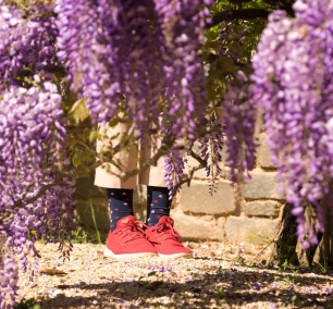 wisteria, flowers, spring, washington dc, dumbarton oaks, red shoes, hearts, georgetown, washington dc,