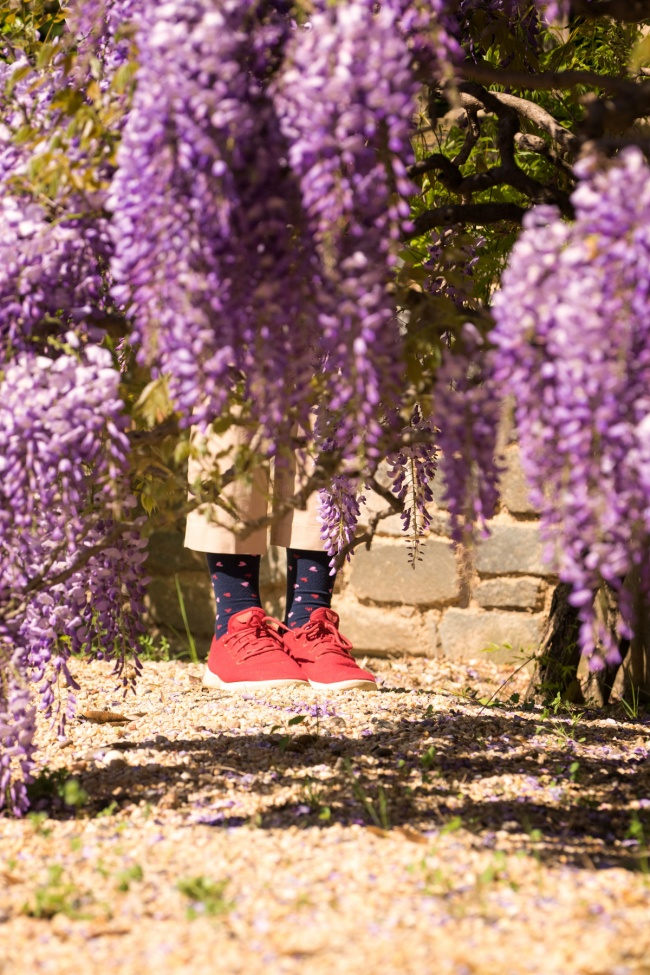 wisteria, flowers, spring, washington dc, dumbarton oaks, red shoes, hearts, georgetown, washington dc,