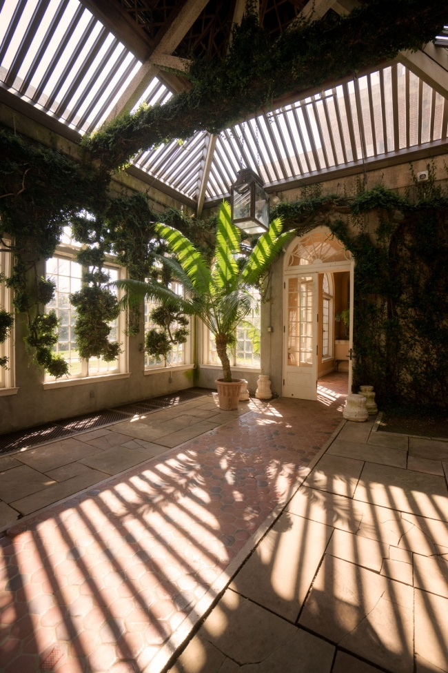 dumbarton oaks, orangery, washington dc, garden, dumbarton oaks museum, georgetown,