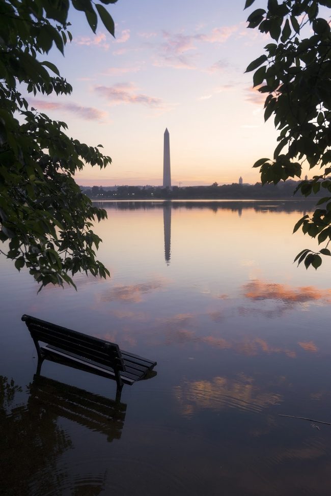 washington dc, national park, national mall, bench, flooding, tidal basin, washington monument, cherry blossom trees, preserve, protect, sunrise, west potomac park, clouds, reflection
