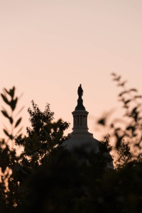us capitol, sunrise, capitol building, washington dc, early morning, us botanical garden, leafs, plants, silhouette, architecture