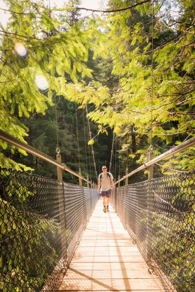 oregon, drift creek falls, hike, lincoln city, suspension bridge, waterfall, framing, Coast Range forest, highway 101, pacific northwest, pnw, waterfall
