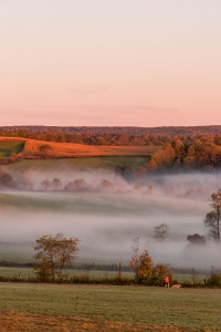 fog, mill run, southwest, ohioplye state park, cucumber falls, waterfall, hills, trese, fall, autumn,
