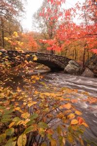 boulder bridge, rock creek park, washington dc, fall colors, autumn, ross drive bridge, potomac river