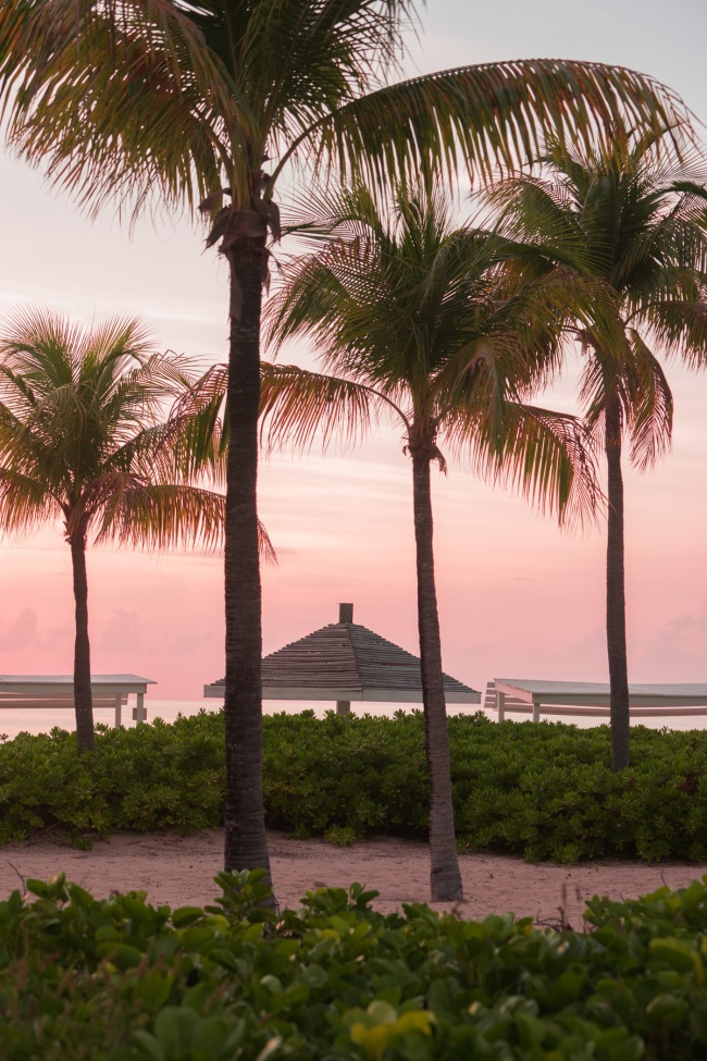 turks and caicos, beach, sunset, palm trees, caribbean, travel, island, island life, Grace Bay, Providenciales, provo,